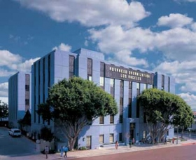 加州洛杉磯的高階機構